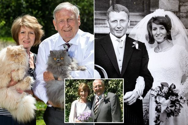 Couple who got divorced because of wife's 10 cats have remarried - even though she has 30 more