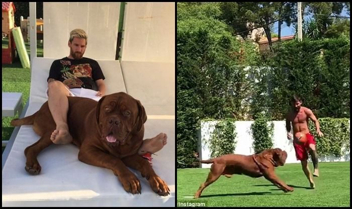 Lionel Messi plays football with his dog